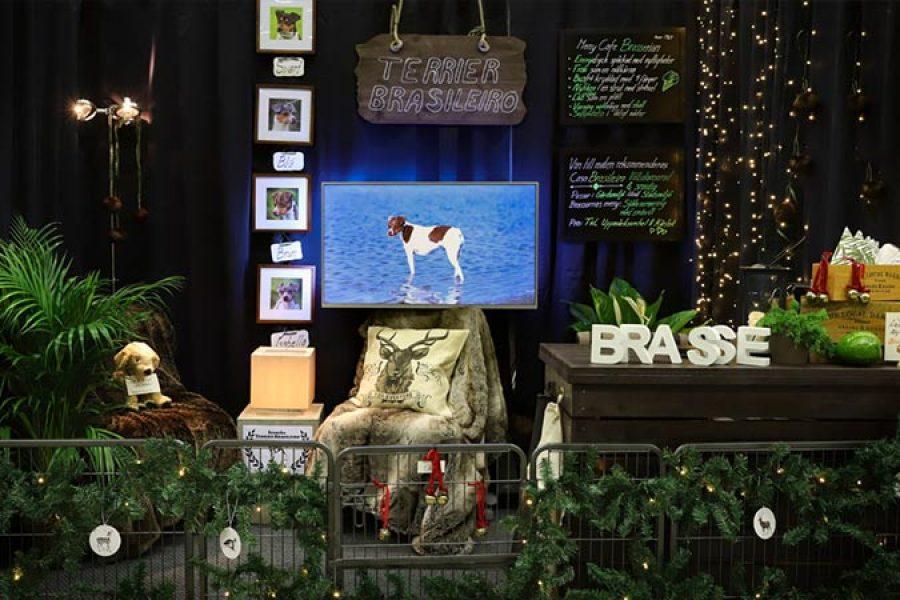 Rasmontern Stockholms Hundmässa 2019